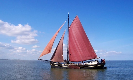 Charter On Risico In Harlingen