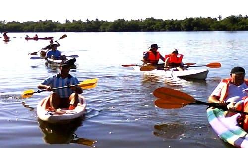 Guided Kayak Tours in Barra de Potosí, Mexico