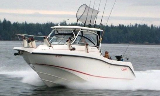 Guided Fishing Charter In Comox