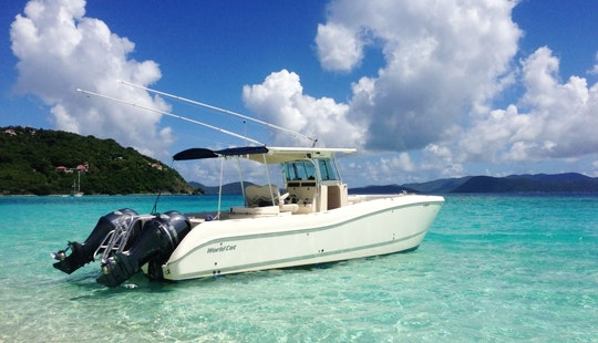 Luxury ''louly Iii'' Center Console Charter In U.s. Virgin Islands
