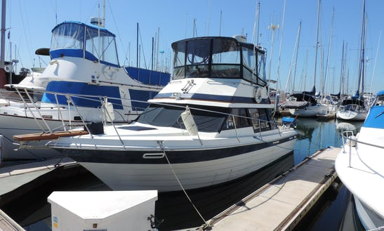 "''penn Yan Predator"" Sport Fisherman Charter In United States"