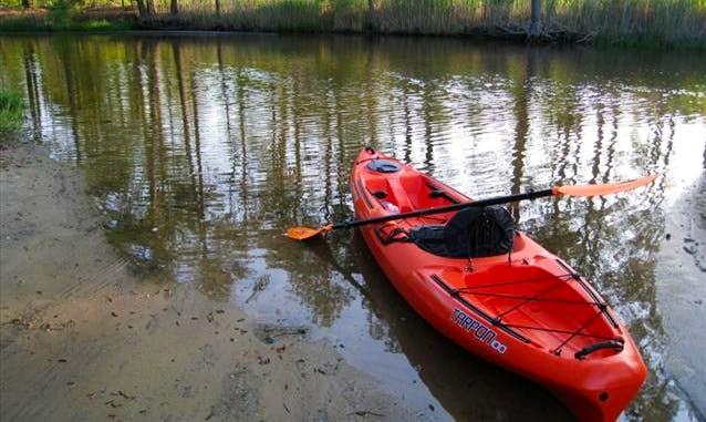Hire Single Kayaks In Winnap
