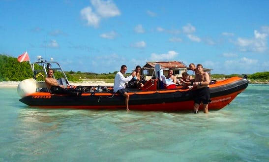 Diving Charters In Curacao