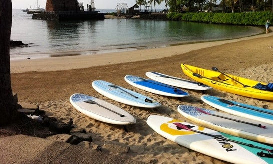 Stand Up Paddle Boards Rental In Kealakekua
