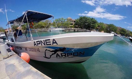 Fishing charters in playa del carmen for Playa del carmen fishing charters