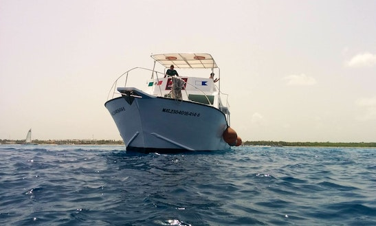 Diving And Snorkeling Tours In Cozumel