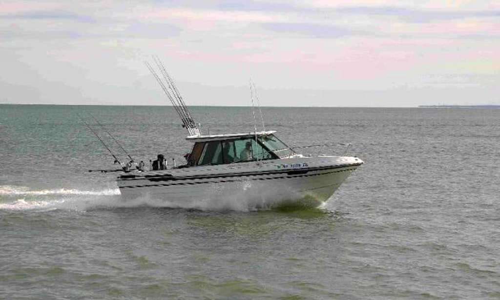 24 39 fishing charter in westfield getmyboat for Fishing trips nyc