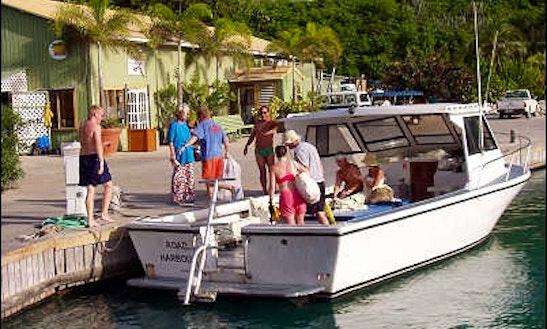 30' Cuddy Cabin Diving Charter In British Virgin Islands