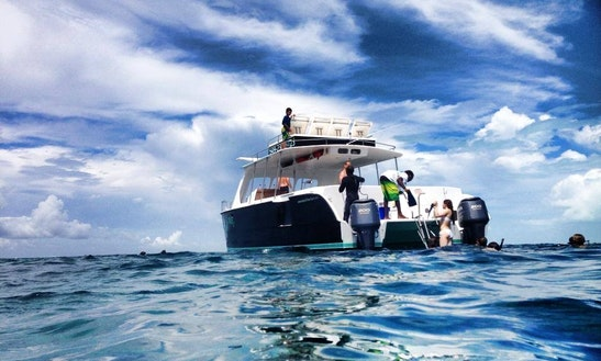 Explore Grace Bay, Half Day Turks And Caicos Islands On This Power Catamaran