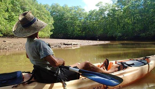 Explore The Estuary In Costa Rica On A Kayak Tour