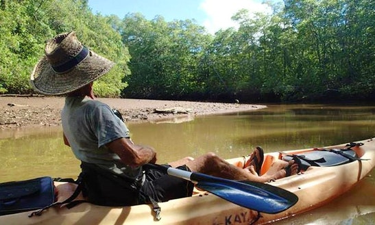 Kayak Tour In Costa Rica
