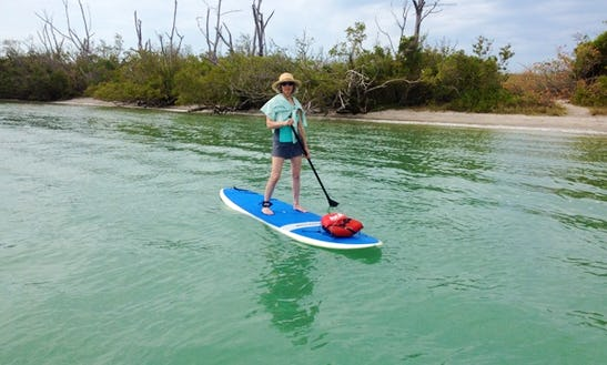 Stand Up Paddle Board Rental In Englewood