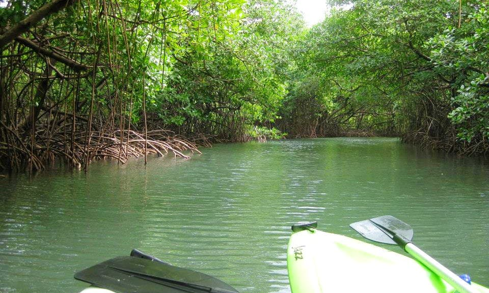Tandem Kayak and Wet Bags for Rent in Puerto Lindo, Panama