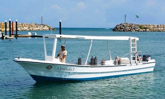 29' Passenger Boat