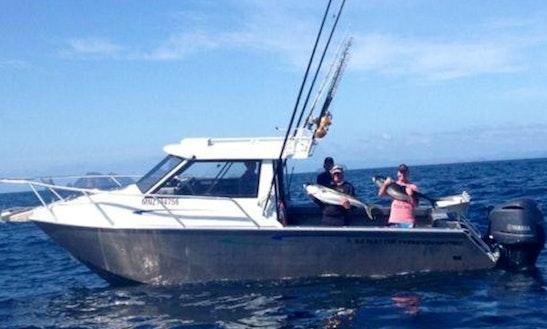 Senator Typhoon Fishing Boat In Whitianga