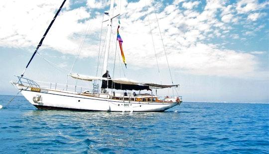 Gay Boat Tours In Puerto Vallarta