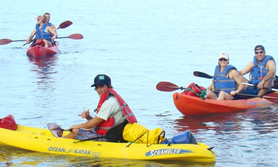Single Kayaks Rental In Captain Cook