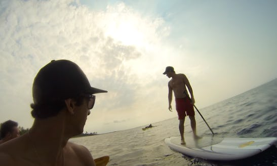 Sup Boards Rental In Captain Cook