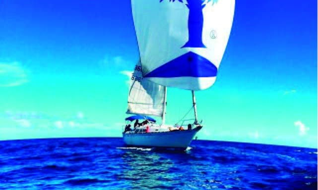 Sailing Private Charter in Charlotte Amalie