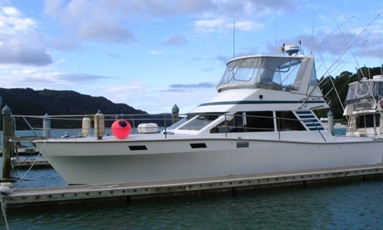 42' Gameboat Fishing Charter In Whangaroa