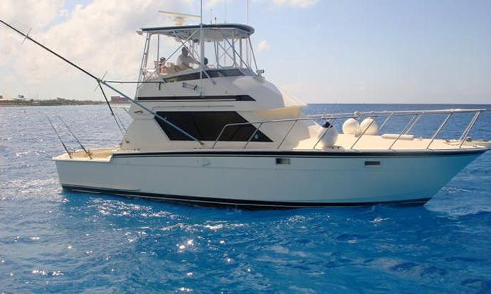 42' Sport Fisherman Charter in San Miguel, Mexico
