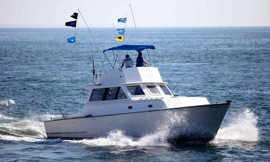 40' Sport Fishing Yacht In Mazatlán