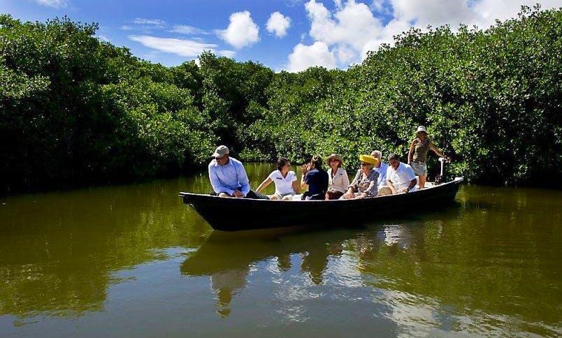 Solar Boat Tours in Bonaire, Netherlands