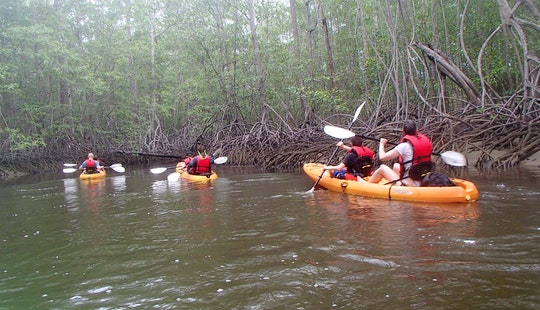 Guided Kayak Tour In Uvita