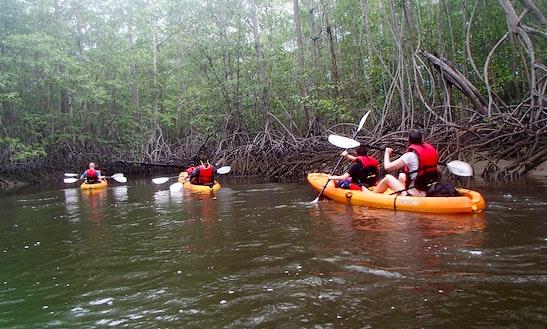Guided Kayak Tour In Uvita