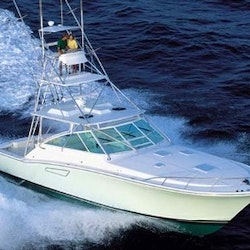 Fishing charter on the dona meche boat in san jos del for San jose del cabo fishing charters