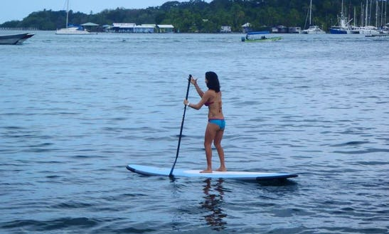 Stand Up Paddle Board Rental In Bocas Del Toro