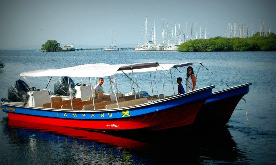 Eco Adventure Boat Tours In Bocas del Toro
