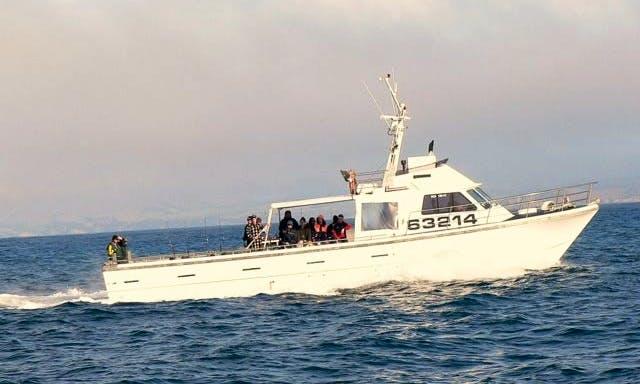 55' Head Boat Fishing Charter in Moeraki, New Zealand
