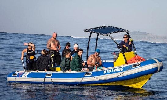 Dive Boat In Durban