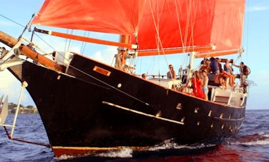 Sailing Trips And Private Charter On The