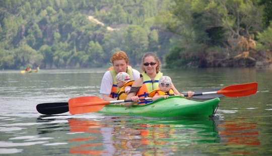 Kayak Excursions For Families And Courses In The River Ebro