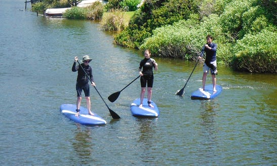Learn The Sup Basic Lesson In Cape Town, South Africa