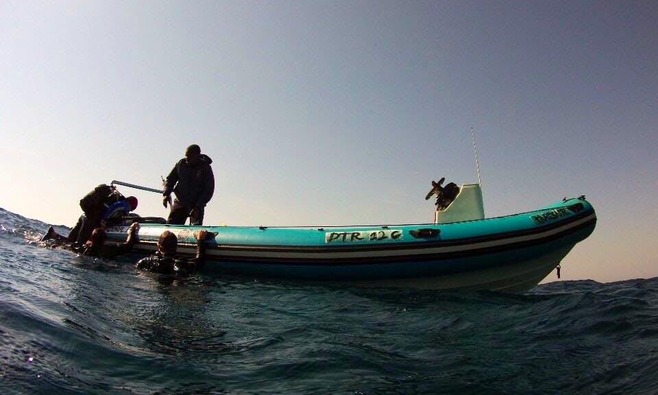 Single 2 Mile Reef Dive Boat Trips in KwaZulu-Natal, South Africa