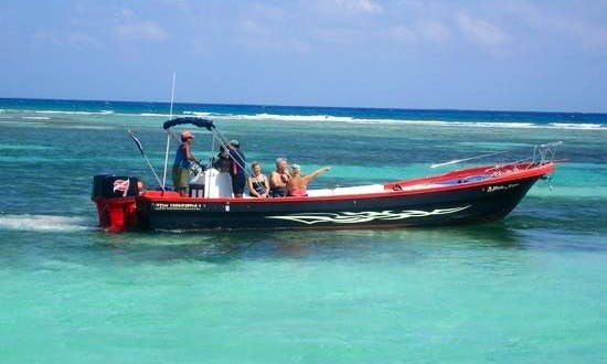 Diving Adventure Trips in Mahahual, Mexico
