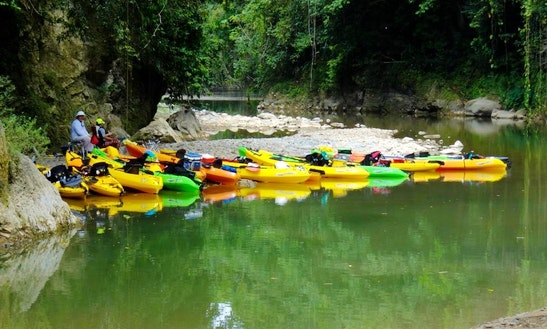 Kayak Rental And Tours In Ponce