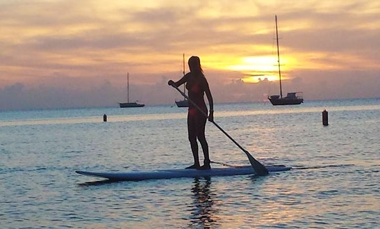 Stand Up Paddle Board Rental In Boqueron