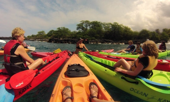 Rent A Solo Sit-on-top Ocean Kayak Or Join A Guided Tour In Kailua-kona, Hawaii