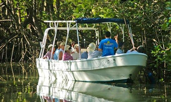 Boat Monkey Tours In Herradura
