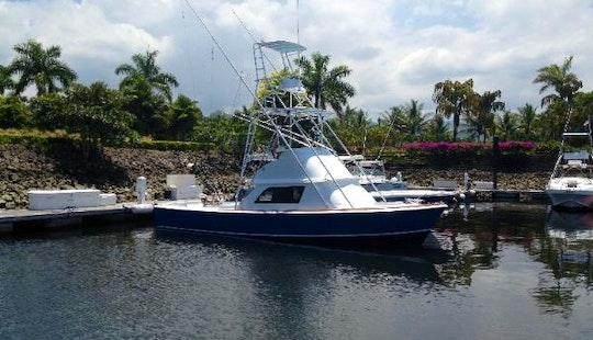 Hop On Board Our 31' Sport Fisherman In Herradura, Costa Rica