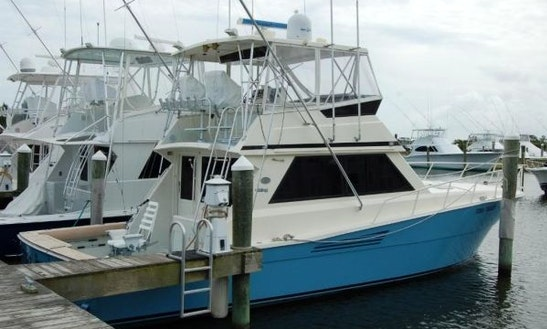 Fishing Charter On 45ft