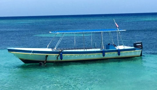 Dive Boat In West Bay