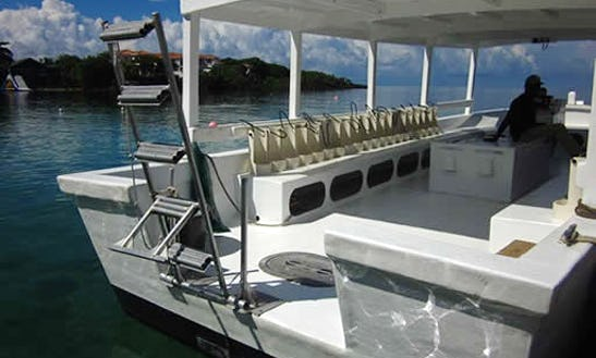 See The Most Visited Dive Sites In Bay Island Of Roatán, Honduras