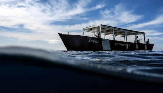 45' Passenger Boat