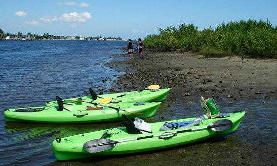 Guided Eco Kayak Tour In Lake Worth
