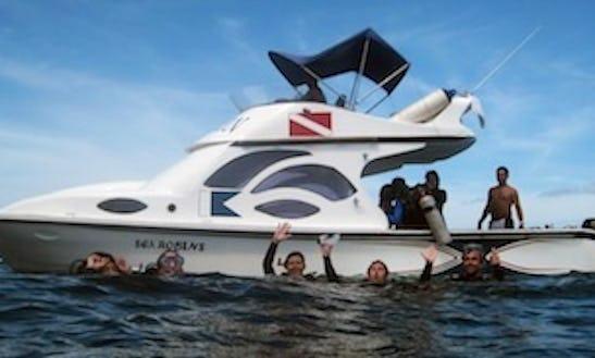 Scuba Diving Charter In Puerto Ayora